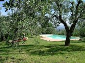 Self-catering apartments with pool near Florence